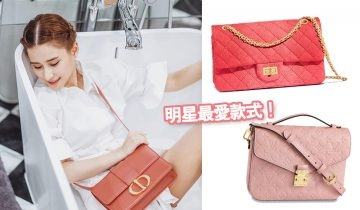 裸粉色名牌手袋2019  8款 CHANEL、DIOR、LOUIS VUITTON真皮手袋超吸引