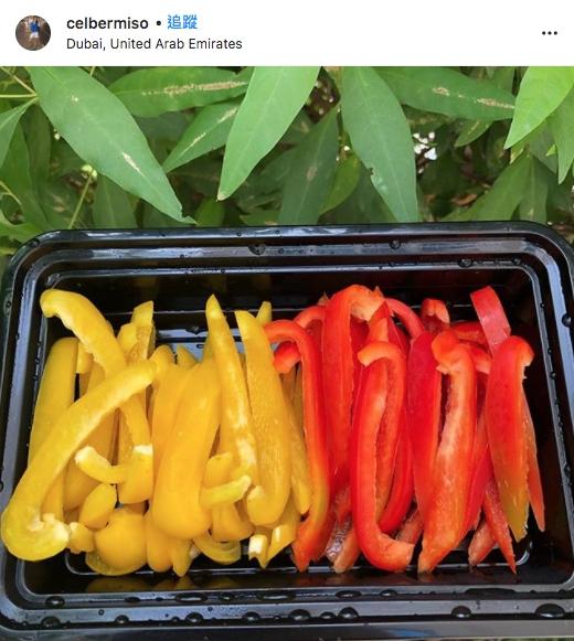 三色椒,青椒,黃椒,紅椒,紫椒,維他命,果糖,抵抗力,膳食纖維