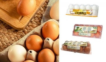 16款雞蛋牌子安全食用清單推薦 最新測試報告不含類雌激素+進食貼士及減肥食譜!CHEER、周氏全上榜