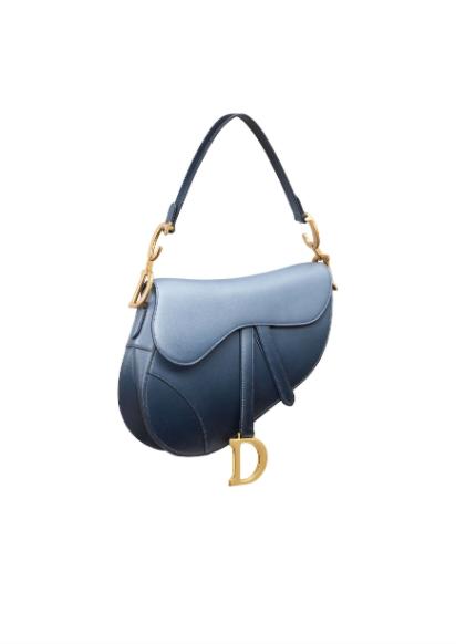 Dior Saddle ,500圖片來源:Dior