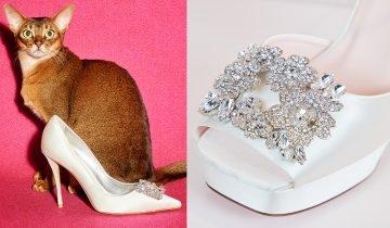 夢幻婚禮必選──星級鞋王Roger Vivier婚嫁鞋  推介15款人氣優雅高跟鞋